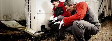 شركة مكافحة الحشرات بتبوك 0501515313 نخلصك من كل ما يؤرقك من حشرات بافضل  نتائج