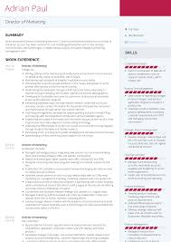 Modern Marketing Resume Director Of Marketing Resume Samples Templates Visualcv