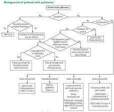 Pathophysiology Of Cholelithiasis In Flow Chart Gallstones Watch And Wait Or Intervene Consult Qd