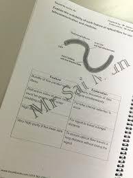 Secret To Score Physics Essay Question A Notes