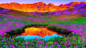 Beautiful Desktop Wallpaper Nature Full ...