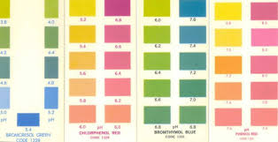 Phenol Red Colour Chart Phenol Red Color Usdchfchart Com
