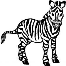 zebra coloring book best timely picture a zebra to color startling p 6869 unknown