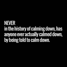 Best Funny Quotes Gorgeous Best Funny Quotes Calm Down OMG Quotes Your Daily Dose Of