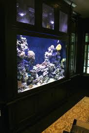 fish tank for office. Astonishing Full Size Of Coffee Fish Aquarium Tank For Office T