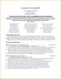 Software Project Manager Resume Therpgmovie