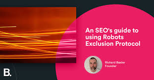 robots txt wildcards the x robots