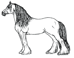 Realistic Unicorn Coloring Pages Printable Horse Coloring Pages