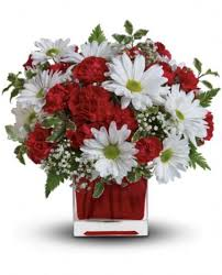 red and white delight by teleflora flowers red and white delight by teleflora flower bouquet