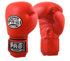 pro boxing classic leather gloves