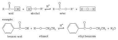 Alcohol Reactions Of Alcohols Britannica Com