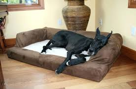 extra large pet beds. Contemporary Large Fashionable Large Breed Dog Beds Extra Bed  Amazon For Pet S