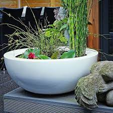 large bowl planters