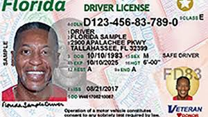 New South Sun In With Arrive Driver Look Licenses Fresh 's Florida xqw81I