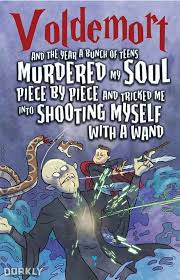if harry potter had been written from voldemort s point of view