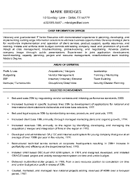 CIO Technology Executive Resume Example Executive Resume And