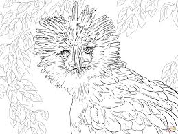 Small Picture Eagle coloring pages Free Coloring Pages
