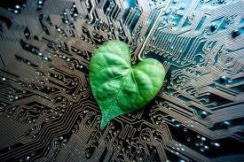 What would it take to make AI 'greener'? | World Economic Forum