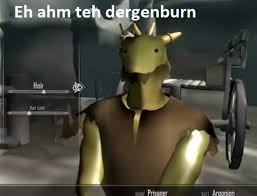 Low Resolution Skyrim Gaming