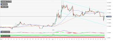 Bitcoin Gold Usd Chart Bitcoin Gold Price Analysis Btg Usd Shows Strong Rebound