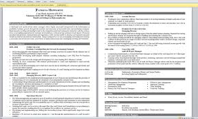 Sample Of Great Resume Example Of A Good Resume 22 Best 20 Good