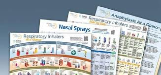 Annual Report Annual Report Allergy Asthma Network 1 Pdf