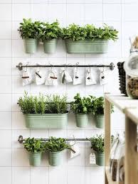 indoor vertical herb garden. Wonderful Vertical Indoor Vertical Herb Garden Using Ikea Buckets With Vertical Herb Garden A