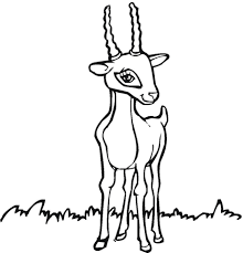 Small Picture Antelope 6 coloring page Free Printable Coloring Pages