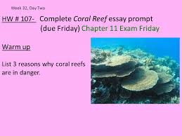 hw complete coral reef essay prompt due friday chapter  hw 107 complete coral reef essay prompt due friday chapter 11 exam