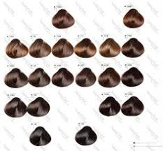 10 Best Goldwell Colorance Images Goldwell Color Chart
