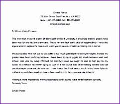 Academic Dismissal Appeal Letter Example Academic Appeal