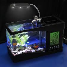15 best small fish tanks images on animal aquarium and glass aquarium