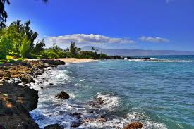 Turtle Bay Snorkeling Best 3 Snorkeling Spots At Oahus