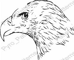 bald eagle template pyrography wood burning bald eagle head bird pattern printable