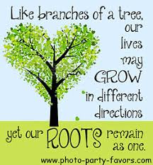 Quotes About The Importance Of Family Magnificent Family Reunion Quotes And Sayings From Photo Party Favors