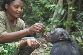 careers animals zoologist career profile of a zoo keeper
