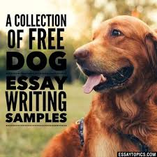 dog essay topics example papers for school kids  dog essay titles sample papers covering all topics dog rescue service dog training favorite dog fighting war dog death dying buying vs adopting
