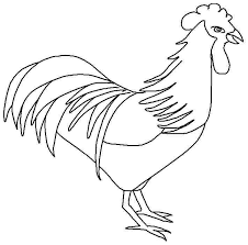 Blue Hen Chicken Coloring Page Free Printable Pages Animal Unique Of