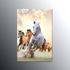 animal canvas print art for wall decor horses canvas wall art animal canvas print art for  on shadow rider horse canvas wall art with appaloosa run running horse canvas wall art by appaloosa run running