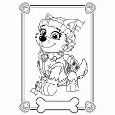 Mooi Kleurplaat Puppy Patrol Classycloudco