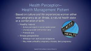 Functional Health Patterns Gordons Functional Health Patterns Pregnancy