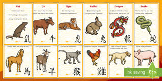 Chinese New Year Zodiac Animal Characteristics Display