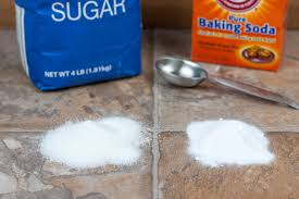 How To Kill Roaches Naturally With Sugar And Baking Soda