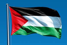 Image result for PALESTINE FLAG