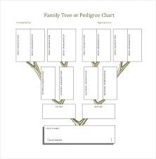 Excel Family Tree Chart Template Software 35 Family Tree Templates Word Pdf Psd Apple Pages