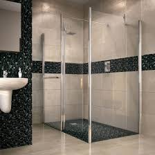 Aquadry Walk In Shower Screen End Panel Ideas
