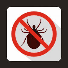 Download Pest Control No Bugs Sign Background