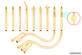 Types Of Urinary Catheters Catheter Tips Buy This Stock Vector
