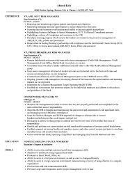Risk Management Resume Examples Best Of VPrisk Manager Resume Samples Velvet Jobs