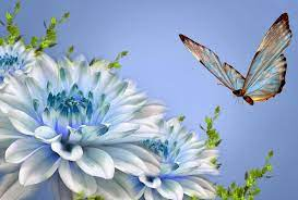 Nature Love Wallpapers - Top Free ...